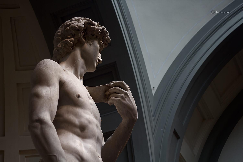 profilo David Michelangelo